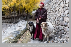 Lady with sheeps