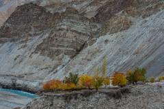 WEB_2013_10_26_Tibet_Leh1843