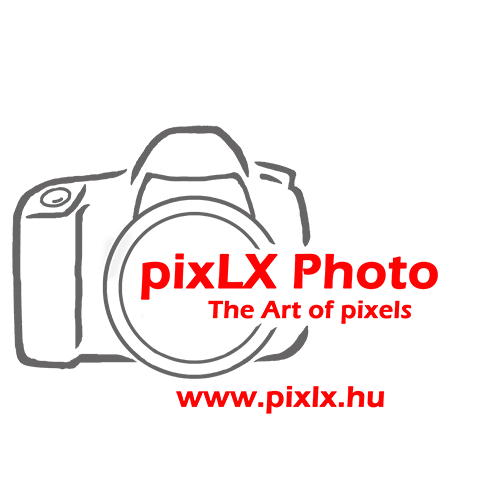 PixLX-Logo-new11_grey-red_new-text_500x500.png