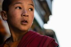 WEB_2013_10_25_Tibet_Leh972